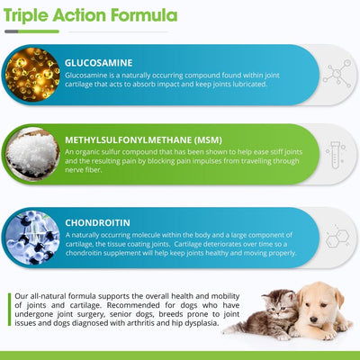 1X Joint and Hip Treats for Dogs