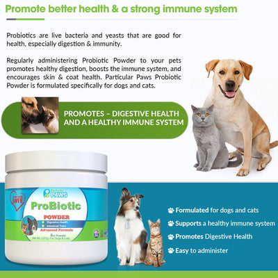 Probiotic Powder for Dogs & Cats
