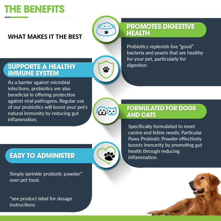 Natural Food Probiotics For Dogs