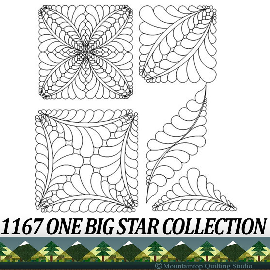 1167 ONE BIG STAR COLLECTION