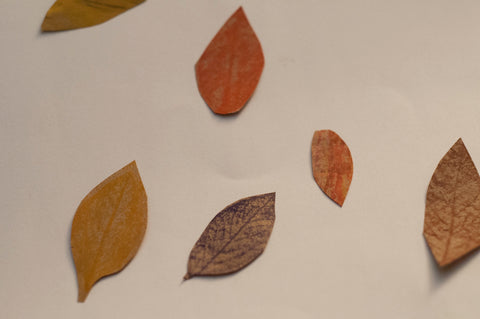 Kids can finish 6-10 leaves of different colors