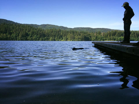 Lucy Swimming at Lake Padden
