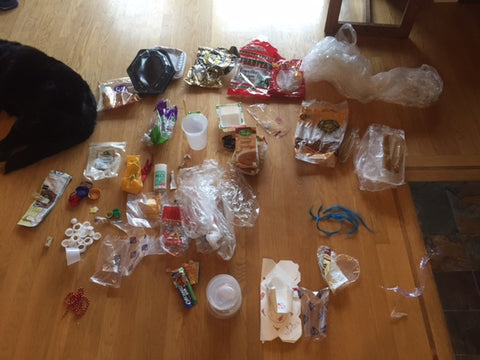 My 2-Week Collection of Plastic Garbage