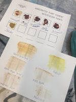 PRINTING AND PAINTING WITH NATURAL DYES