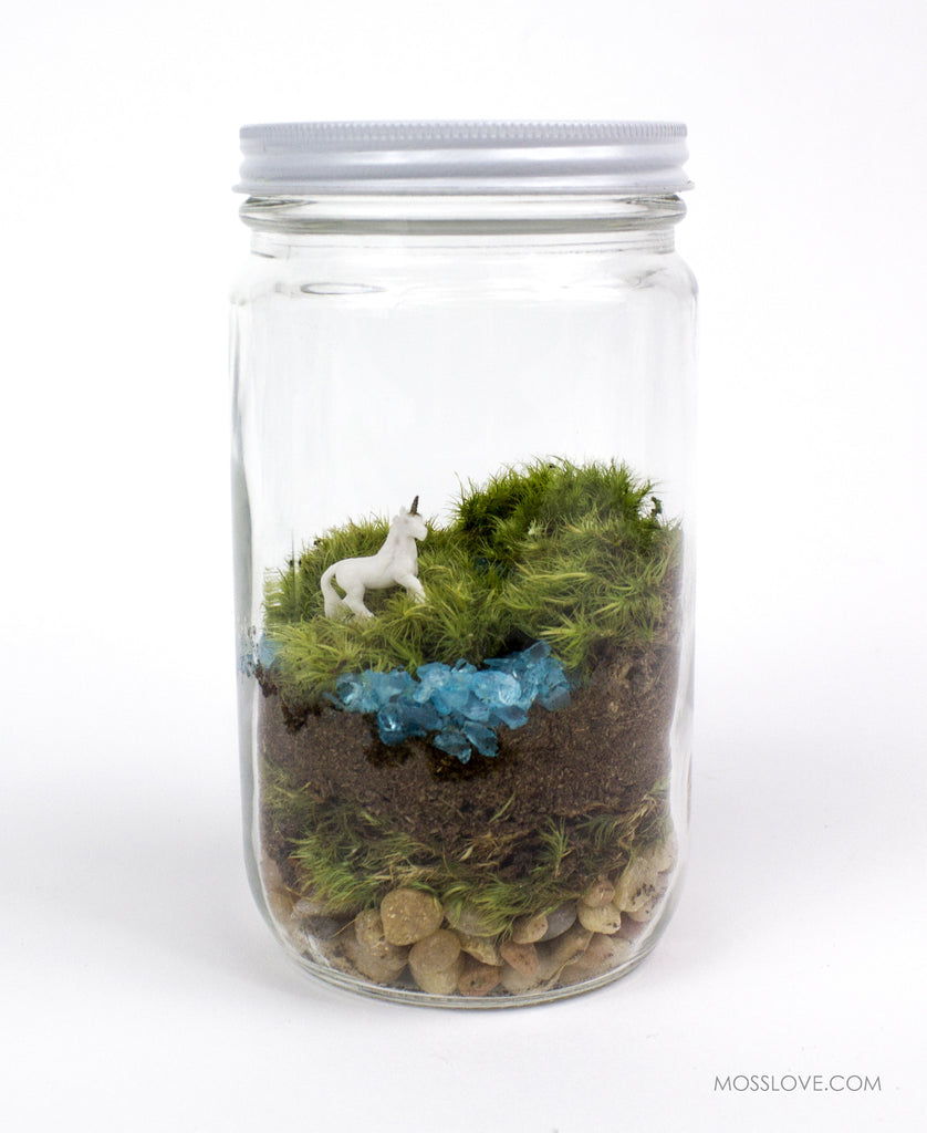 DIY Terrarium Kit // Unicorn