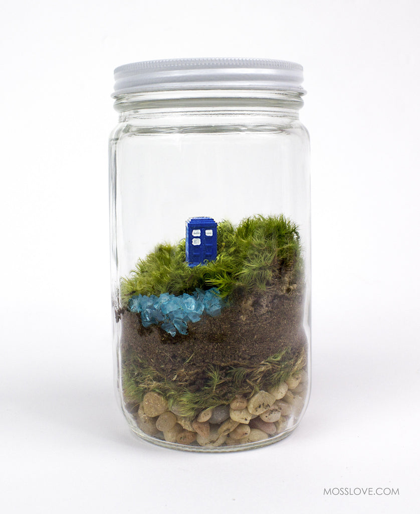 Terrarium // Dr. Who Inspired