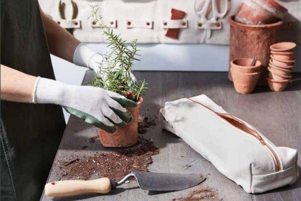 Bring Your Garden Indoors During Cold Winter Months
