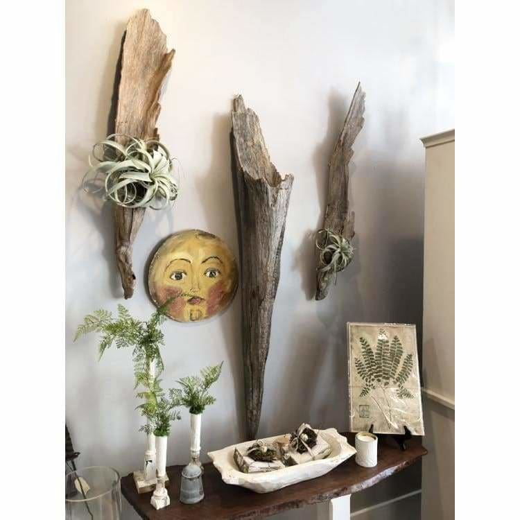 Driftwood Wall Art