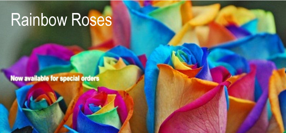 Rainbow Roses for special orders