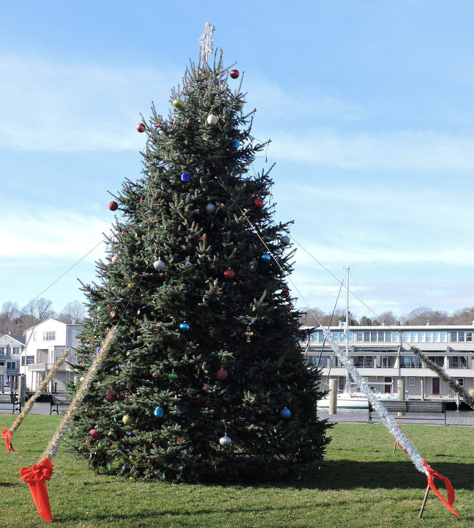 The Holidays in Mystic