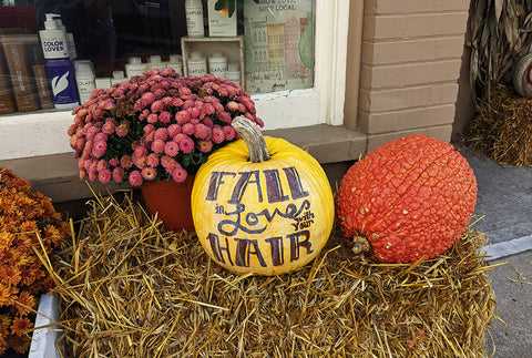 fall pumpkins and flowers in Mystic