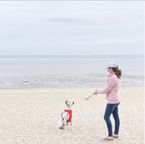dog toy play at beach by @knotsoloud