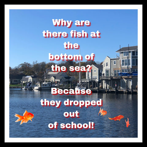 why are fish at the bottom of the sea? because they dropped out of school