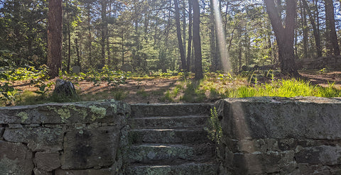 photo of graveyard with steps
