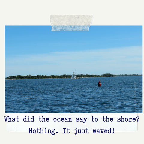 what did the ocean say to the shore? nothing, it just waved