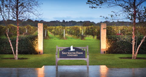 Saltwater Farms Vineyard Stonington CT