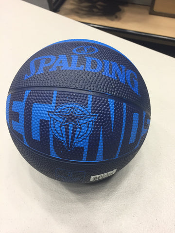 Spalding Navy/Royal Mini Ball