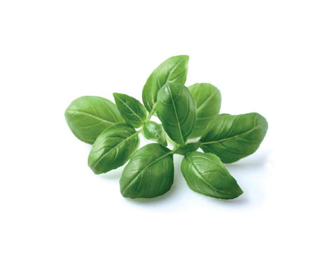 Basil to smooth the labor