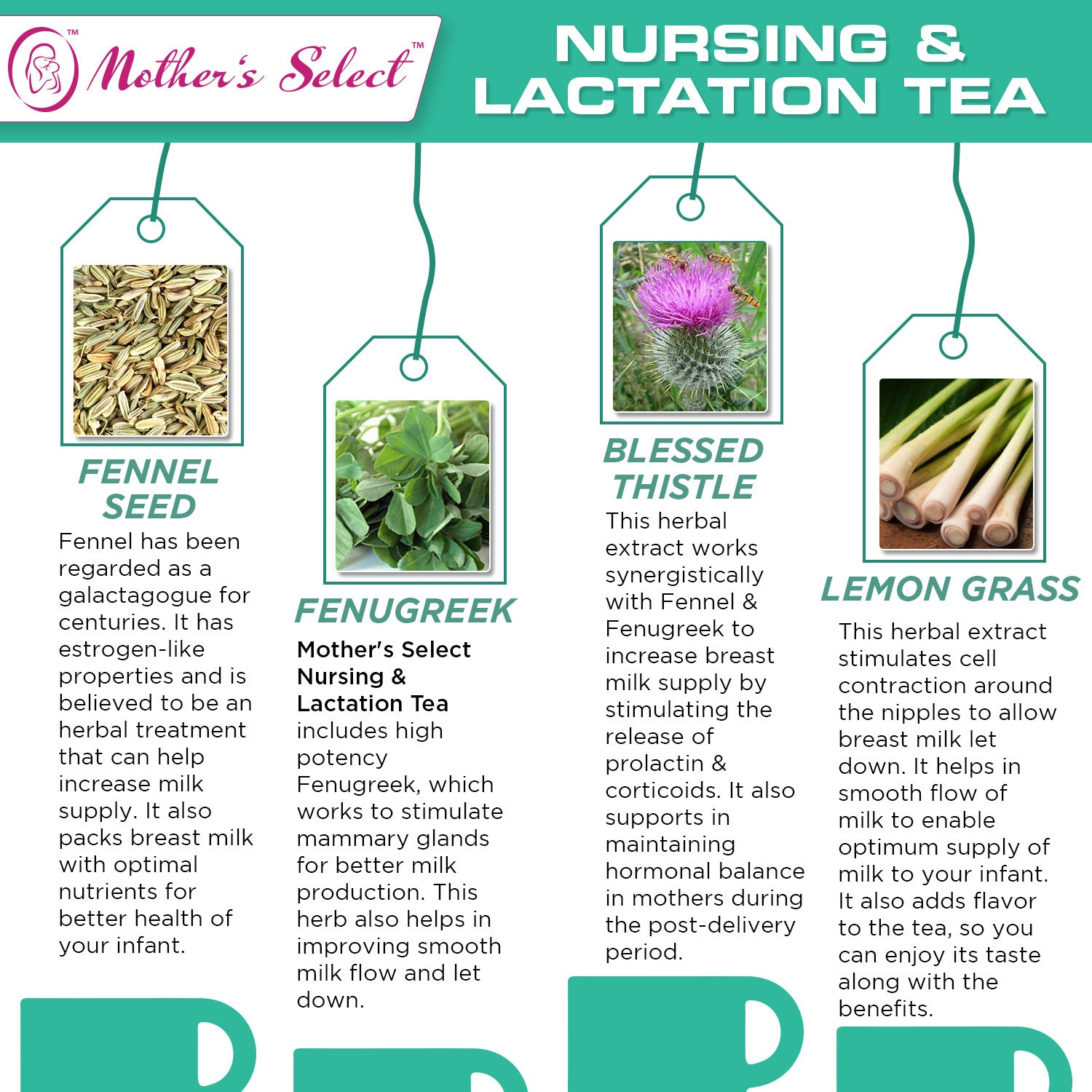 Seeds during lactation: benefit or harm