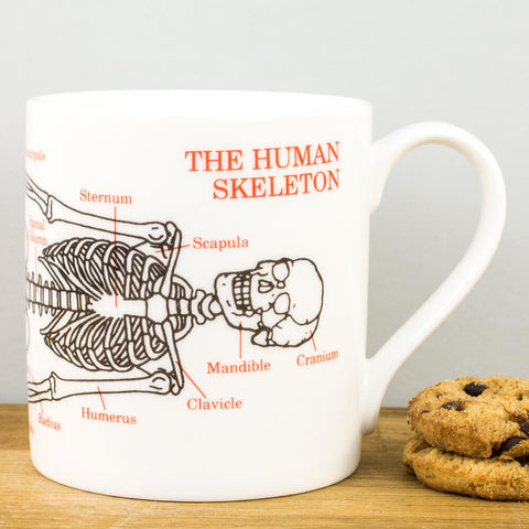 Educational Skeleton China Mug