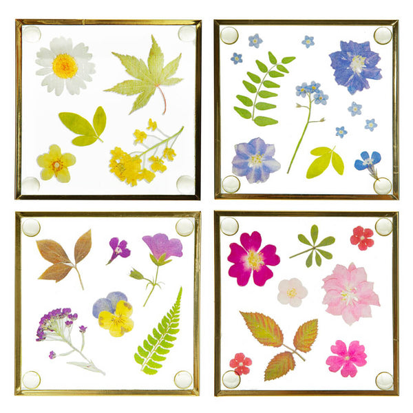 Pressed Flowers Glass Coaster Set