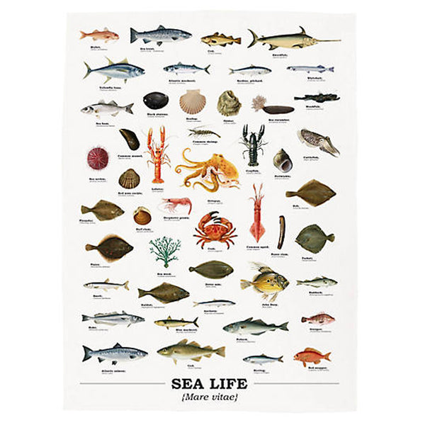 Ecologie Mare Vitae Sea Life Tea Towel