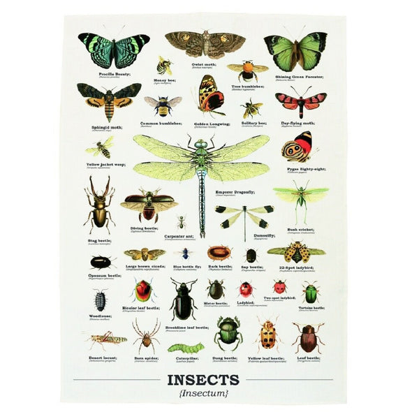 Ecologie Insectum Insects Tea Towel