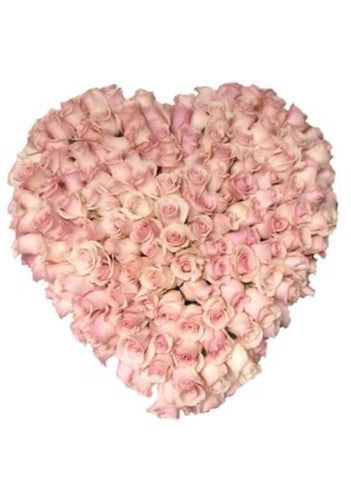How deep is your love- over 200 roses in a heart.