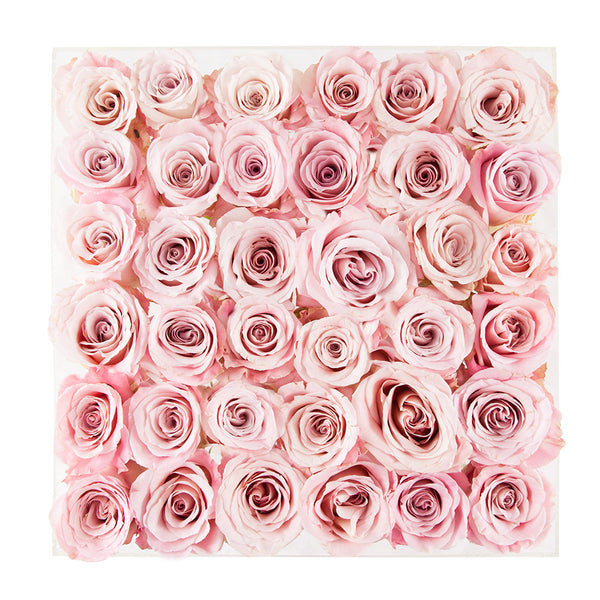 three dozen faith roses perfect square