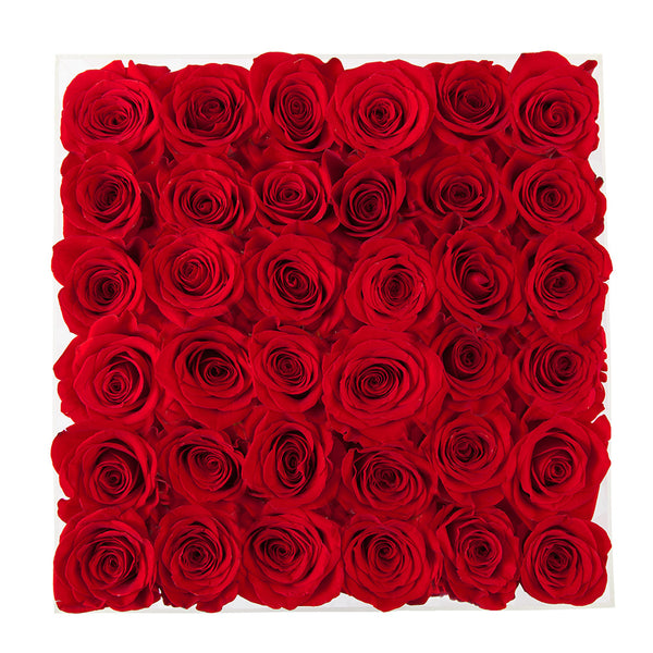 amazing red roses arranged in square acrylic box