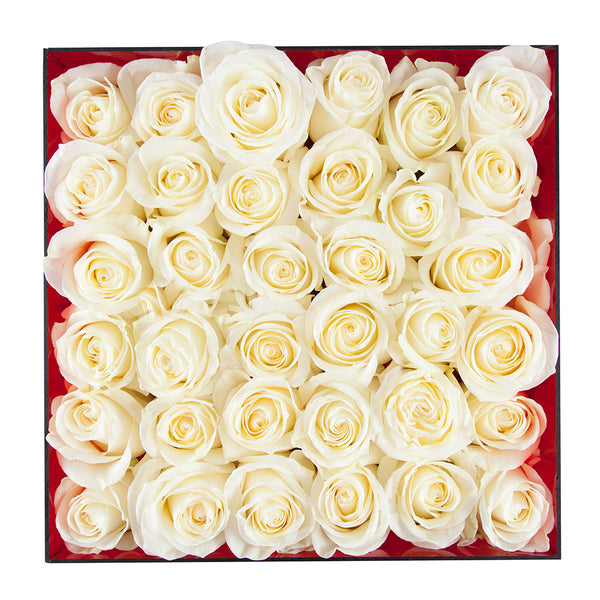 square arrangement of white roses in an acrylic case