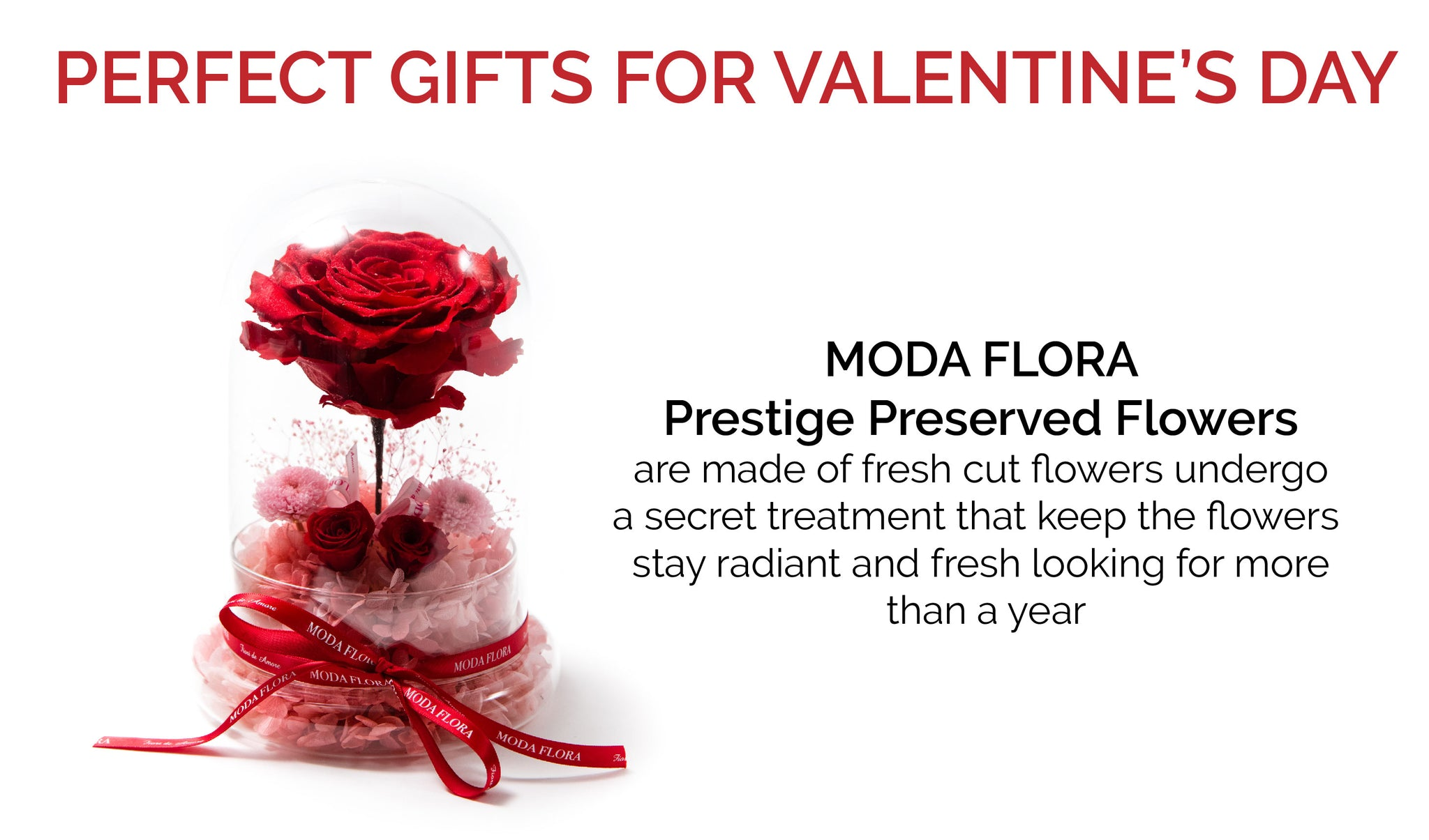 moda flora valentines day specials available at four seasons hotel - Valentine Day Hotel Specials
