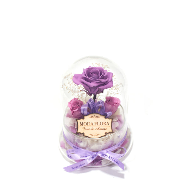 The Little Princess - Lavender - MODA FLORA