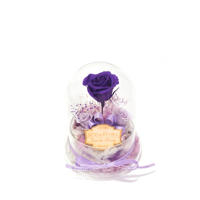 The Little Princess - Purple - MODA FLORA