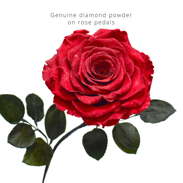 The GRAND BEAUTY (With Diamond Powder) - MODA FLORA