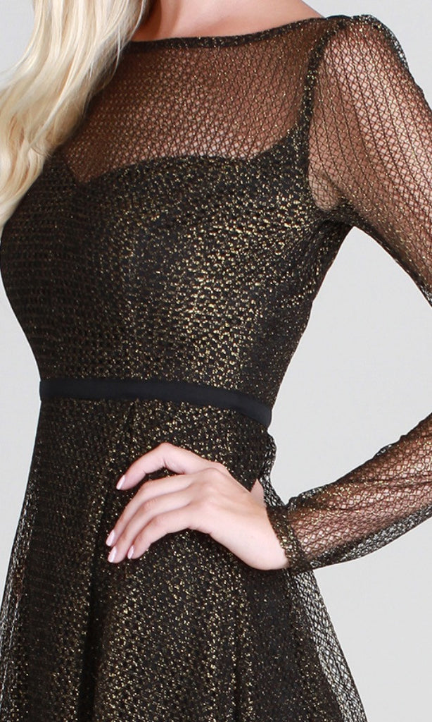 Net Mesh Fit & Flare Dress
