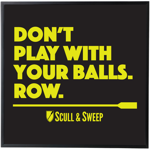 S&S Don't Play With Balls