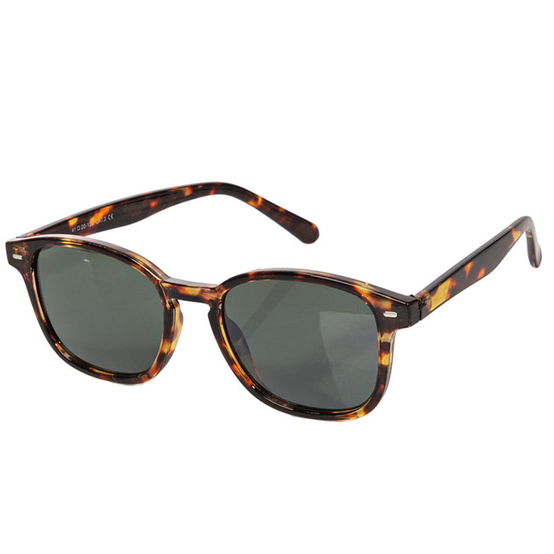 Wayfarer Sunglasses Tortoise Brown