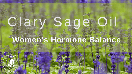 Clary Sage: A Woman's Best Friend