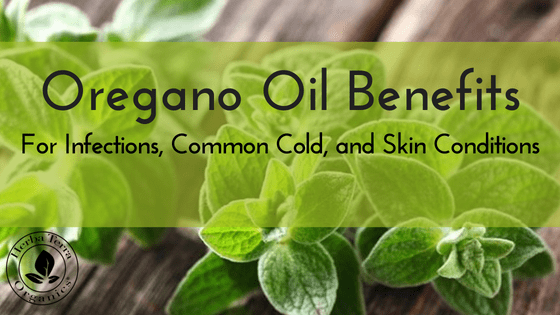 Oregano Essential Oil Health Boosters and Remedies