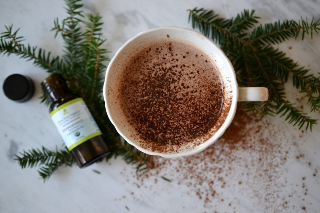 Holidays Drink with a Twist - The BEST Healthy Hot Cocoa Recipe with Peppermint Essential Oil