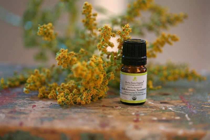 9 Health Benefits of Helichrysum Essential Oil You Didn't Know About