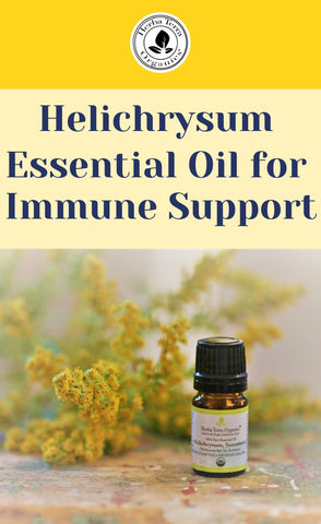helichrysum oil for immune support