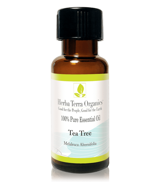 USDA Certified Organic Tea Tree Essential Oil