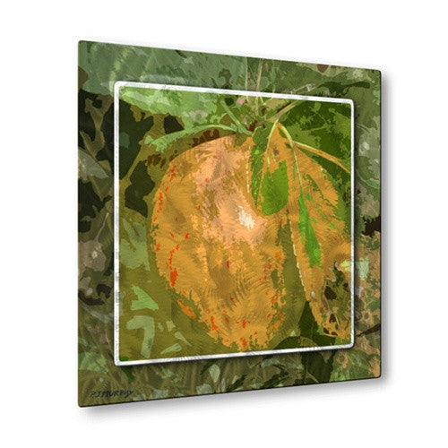 Orchard - Metal Wall Art Decor - Patrick Murphy
