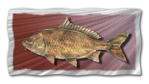 Common Carp - Metal Wall Art Decor - Jeff Currier