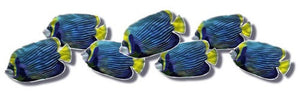 School of Blue Fish - Metal Wall Art Decor - Steve Heriot