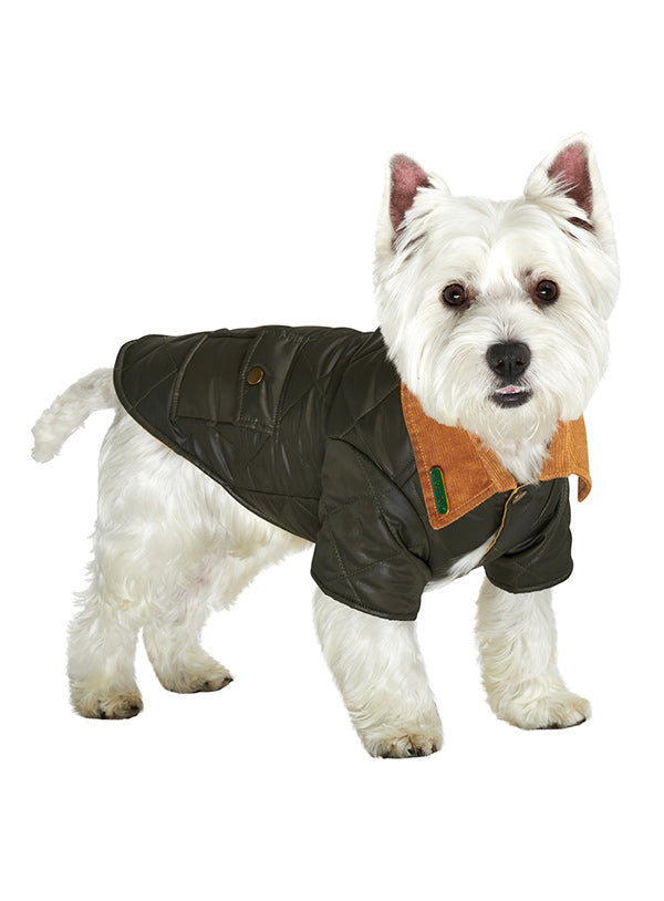 FOREST GREEN QUILTED TOWN & COUNTRY DOG COAT, Coats - Bones Bizzness