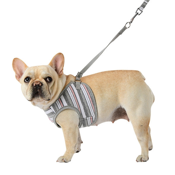 CARA PUPPIA DOG HARNESS Q - GREY, Harness - Bones Bizzness