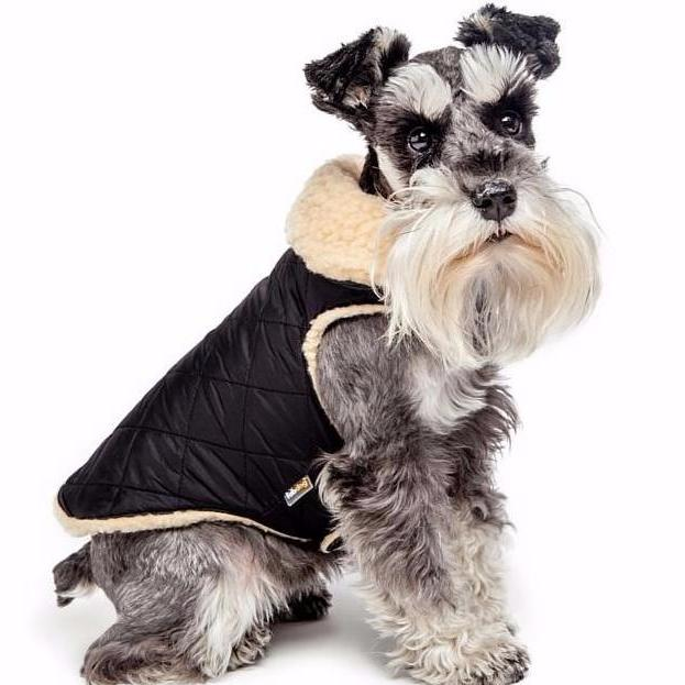 QUILTED SHEARLING BLACK DOG JACKET, Coats - Bones Bizzness